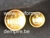 boutons_garde_imperiale_seconf_empire_infanterie_wwwuniformesdempirebe