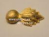 grenade_de_col_kepi_officier_infanterie_zouave_1863_www.uniformesdempirebe