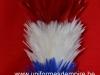 plumet_garde_republicaine_francais