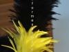 plumet_noire_et_jaune_plumes_de_coq_pointues