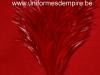 plumet_plumes_de_coq_rouge